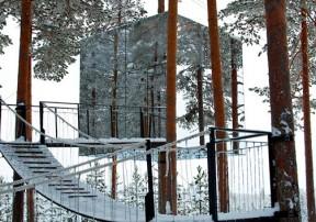 Интересные места. Treehotel — отель на дереве